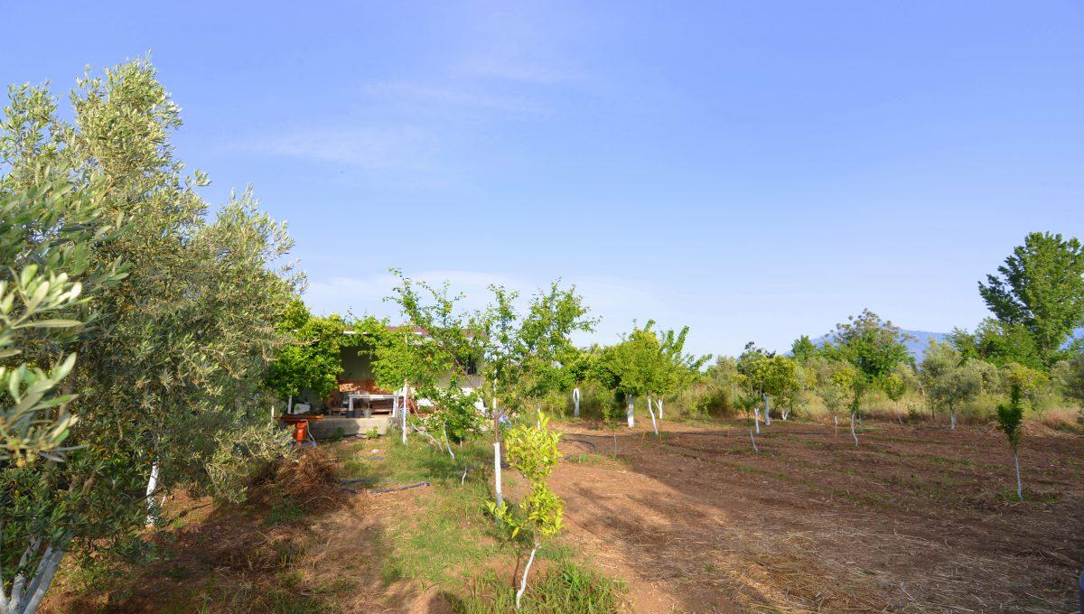 yanıklarda satılık arazi (1)
