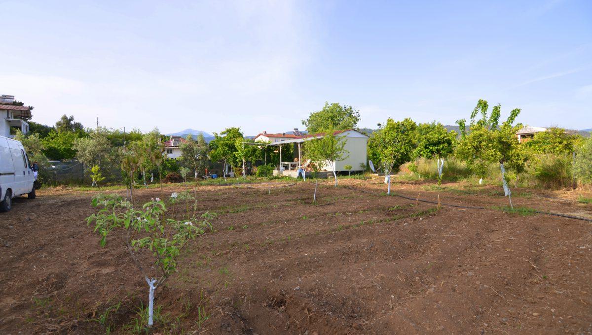yanıklarda satılık arazi (5)
