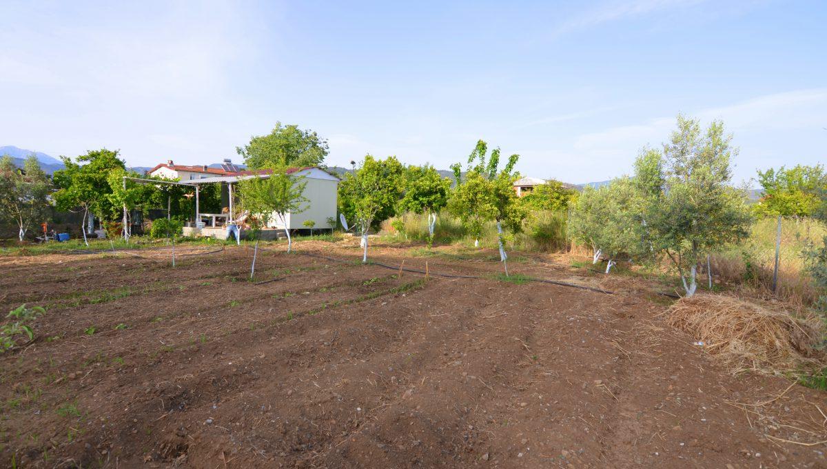 yanıklarda satılık arazi (6)
