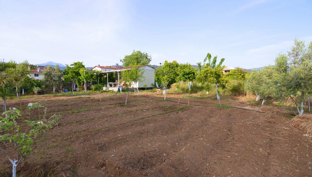 yanıklarda satılık arazi (7)