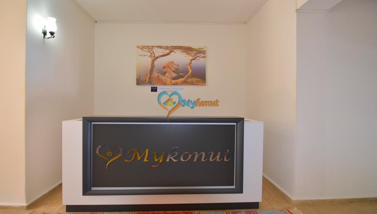 karagözlerde günlük kiralık boutıque oda (17)